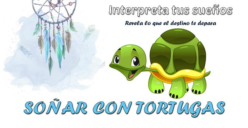 significado soñar con tortugas