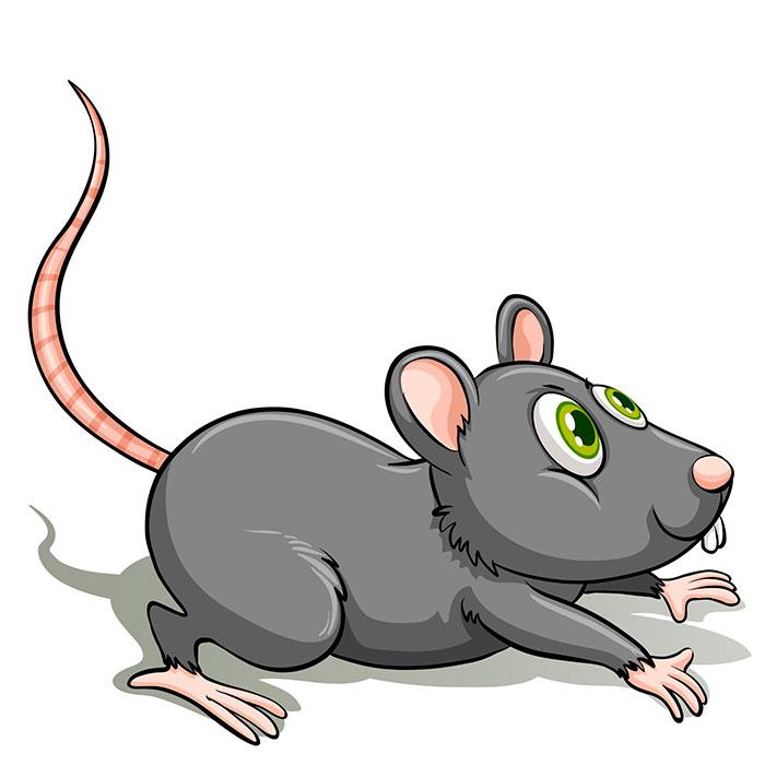 significado soñar con ratones